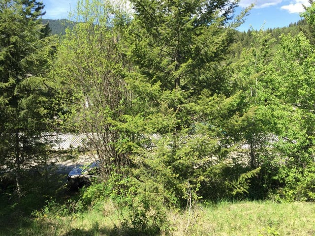 Lot 9 & 17 Silver Avenue S - Greenwood No Building for sale(2405539) #6