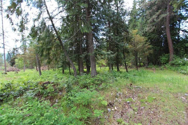 1927 SETTERLAND Road - Christina Lake No Building for sale(2428633) #10