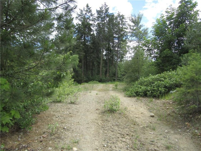 28 CHASE Road - Christina Lake No Building for sale(2430598) #10