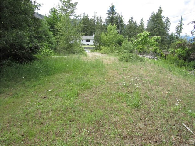 28 CHASE Road - Christina Lake No Building for sale(2430598) #5