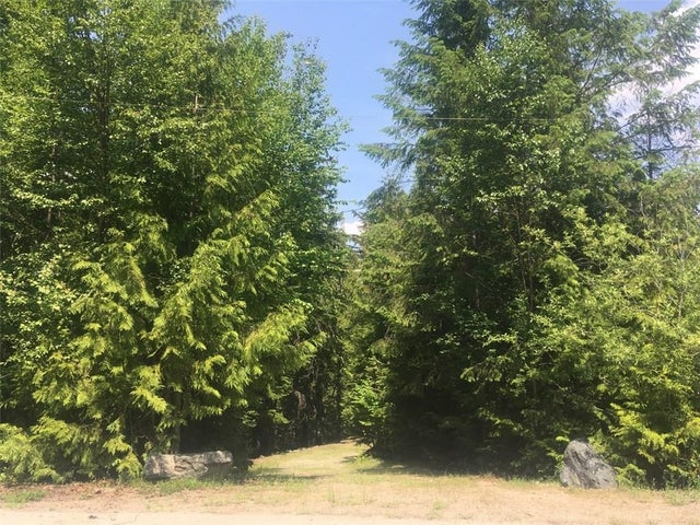 289 CHASE Road - Christina Lake No Building for sale(2438201) #1