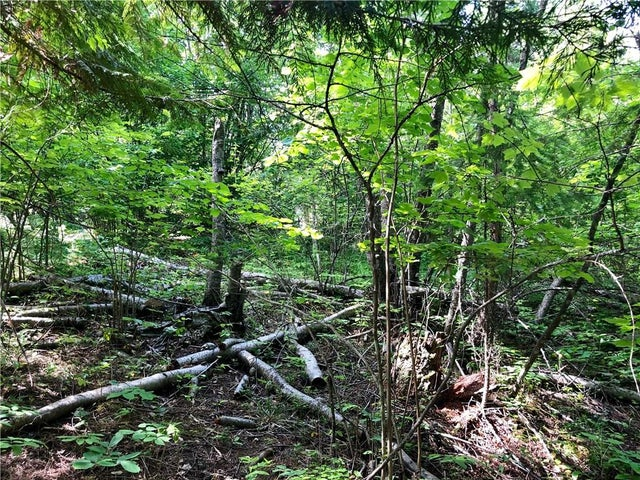 Lot 8 McIntyre Road - Christina Lake No Building for sale(2438290) #2
