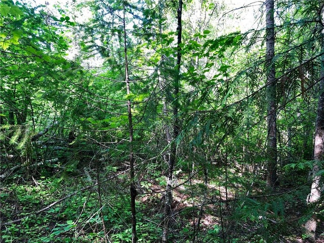 Lot 8 McIntyre Road - Christina Lake No Building for sale(2438290) #3