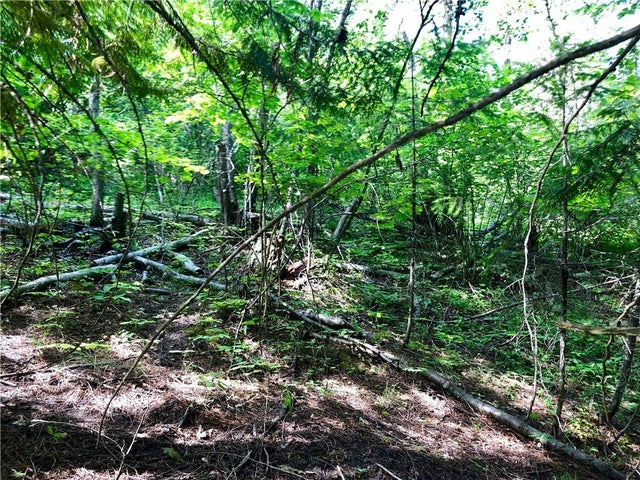 Lot 8 McIntyre Road - Christina Lake No Building for sale(2438290) #4