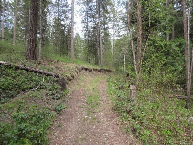 Lot 3 HIGHWAY 3 - Christina Lake No Building for sale(2438439) #10