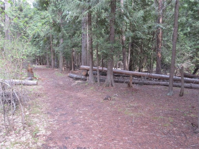 Lot 3 HIGHWAY 3 - Christina Lake No Building for sale(2438439) #11