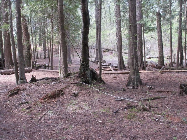 Lot 3 HIGHWAY 3 - Christina Lake No Building for sale(2438439) #17