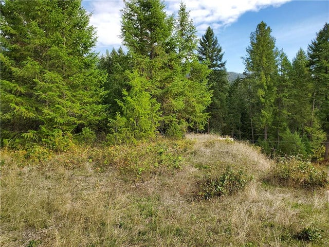 1537 Thompson Road - Christina Lake No Building for sale(2441452) #4