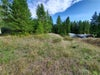 1537 Thompson Road - Christina Lake No Building for sale(2441452) #1